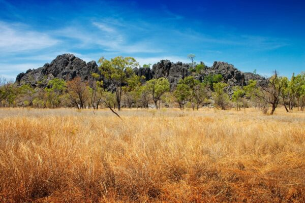 Beautiful but rugged outback of Australia.  The volcanic rock outcrop is the Royal Arch caves at Chillagoe.